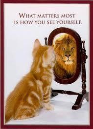 confidence 4