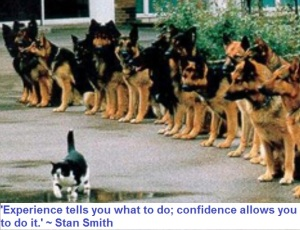confidence experience 1